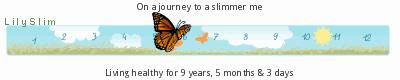 LilySlim Diet days (2C1y)